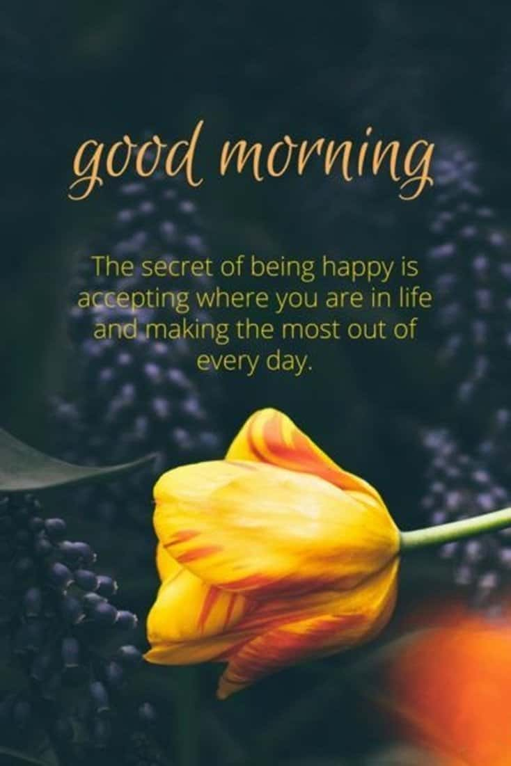 10 Good Morning Quotes With Images 6