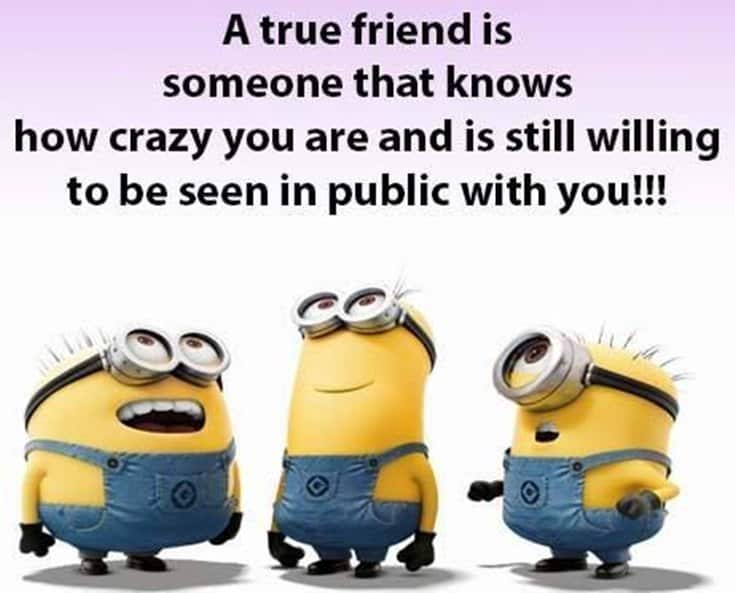 35 Cute Best Friends Quotes True Friendship Quotes With Images 28
