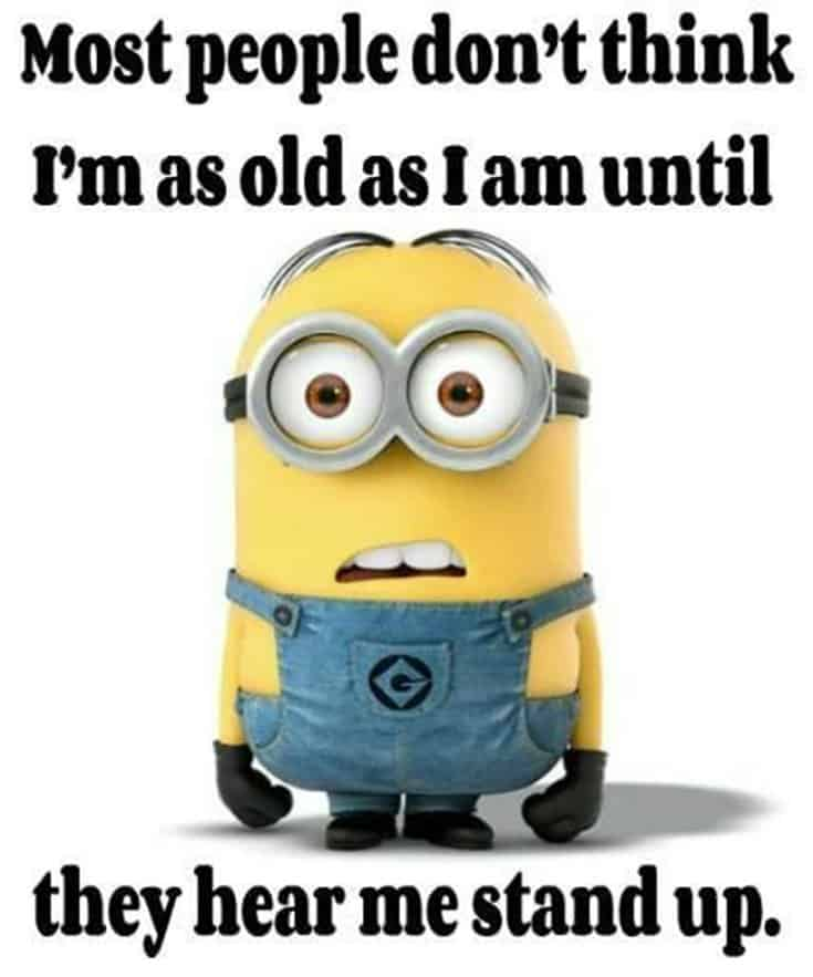 59 Funny Minions Picture Quotes Funny Memes 2