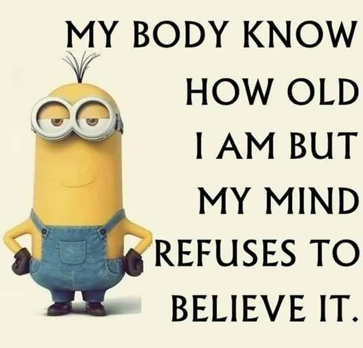59 Funny Minions Picture Quotes Funny Memes 36