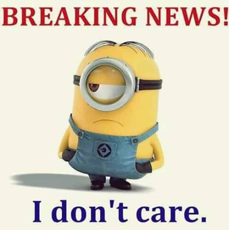 59 Funny Minions Picture Quotes Funny Memes 4