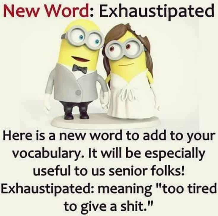 59 Funny Minions Picture Quotes Funny Memes 40