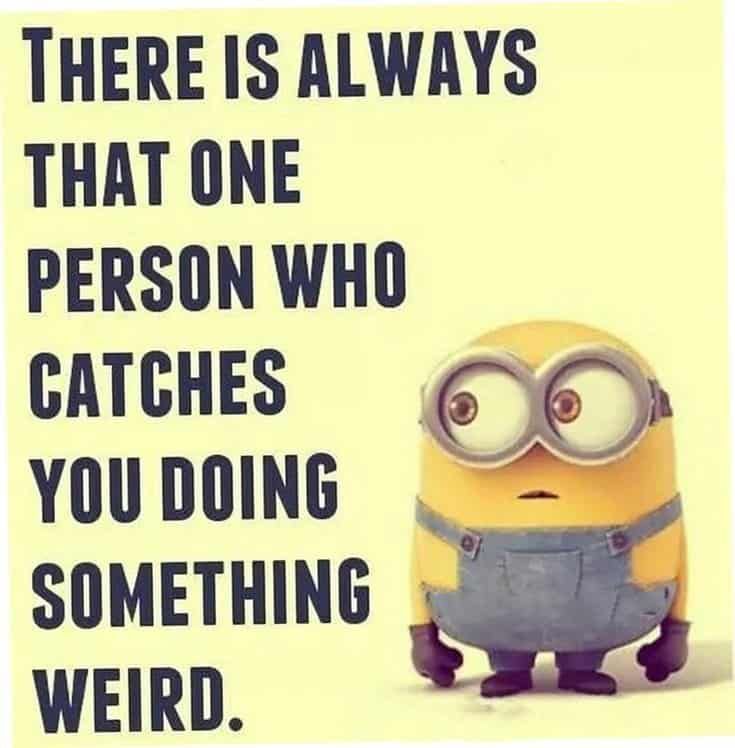 59 Funny Minions Picture Quotes Funny Memes 48