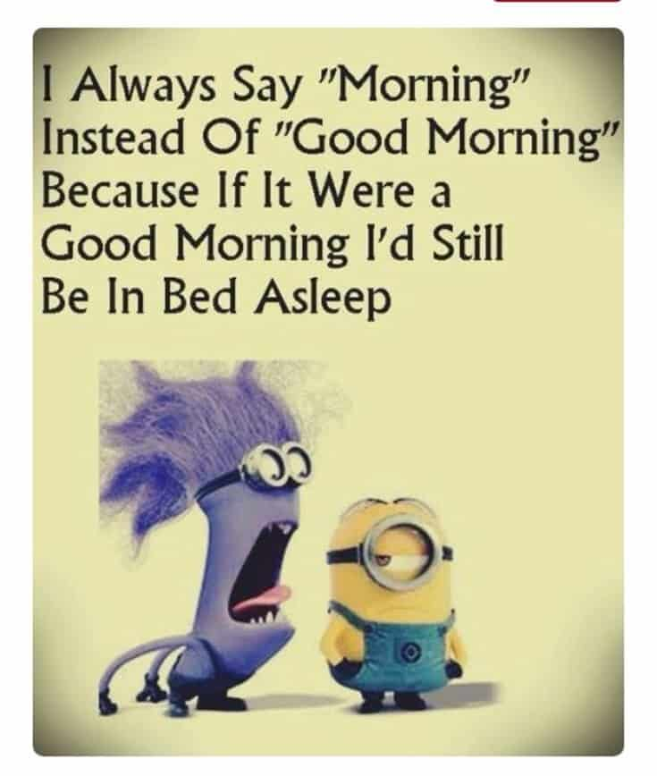59 Funny Minions Picture Quotes Funny Memes 5