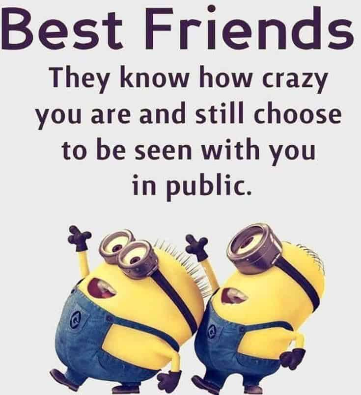 59 Funny Minions Picture Quotes Funny Memes 9