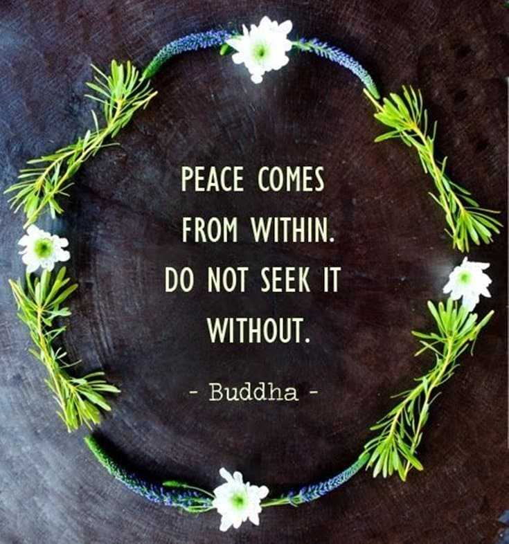 56 Buddha Quotes to Reignite Your Love 13