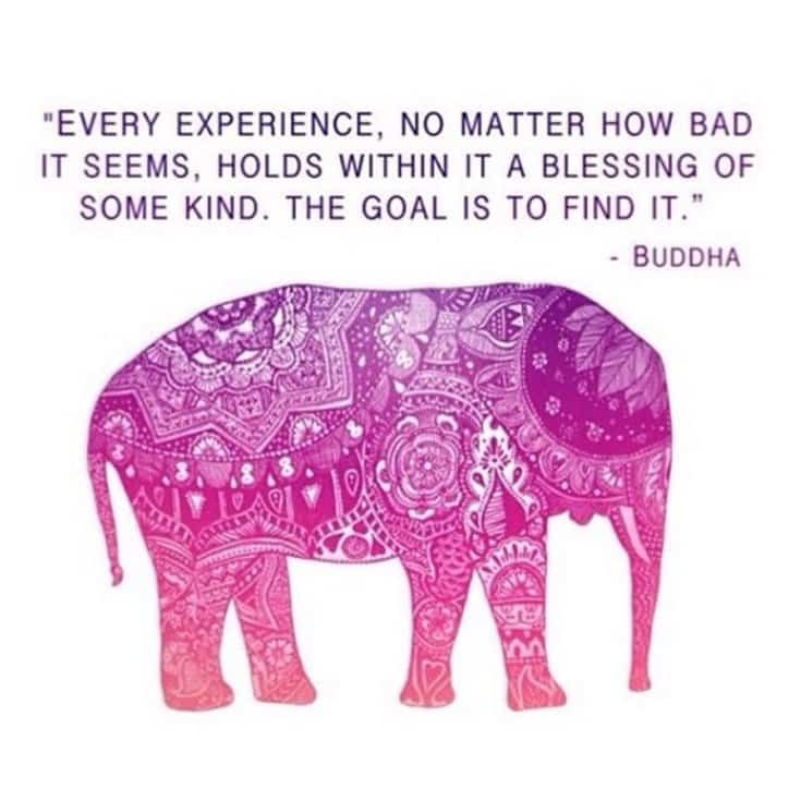 56 Buddha Quotes to Reignite Your Love 16