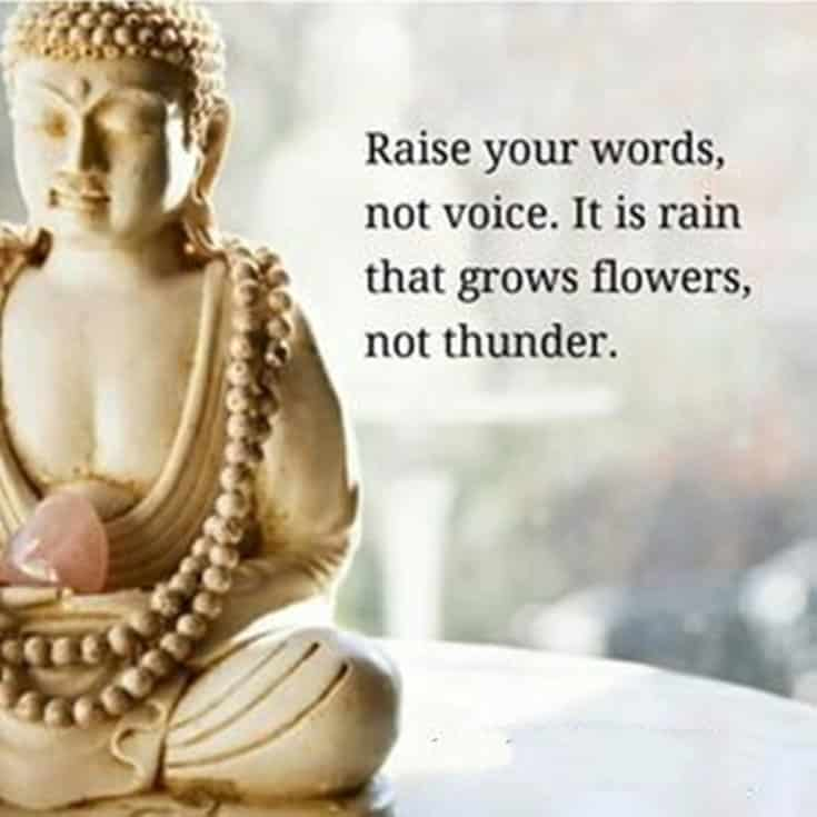 56 Buddha Quotes to Reignite Your Love 47