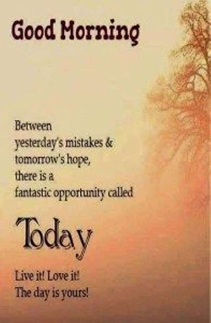 35 Inspirational Good Morning Quotes and Wishes 22