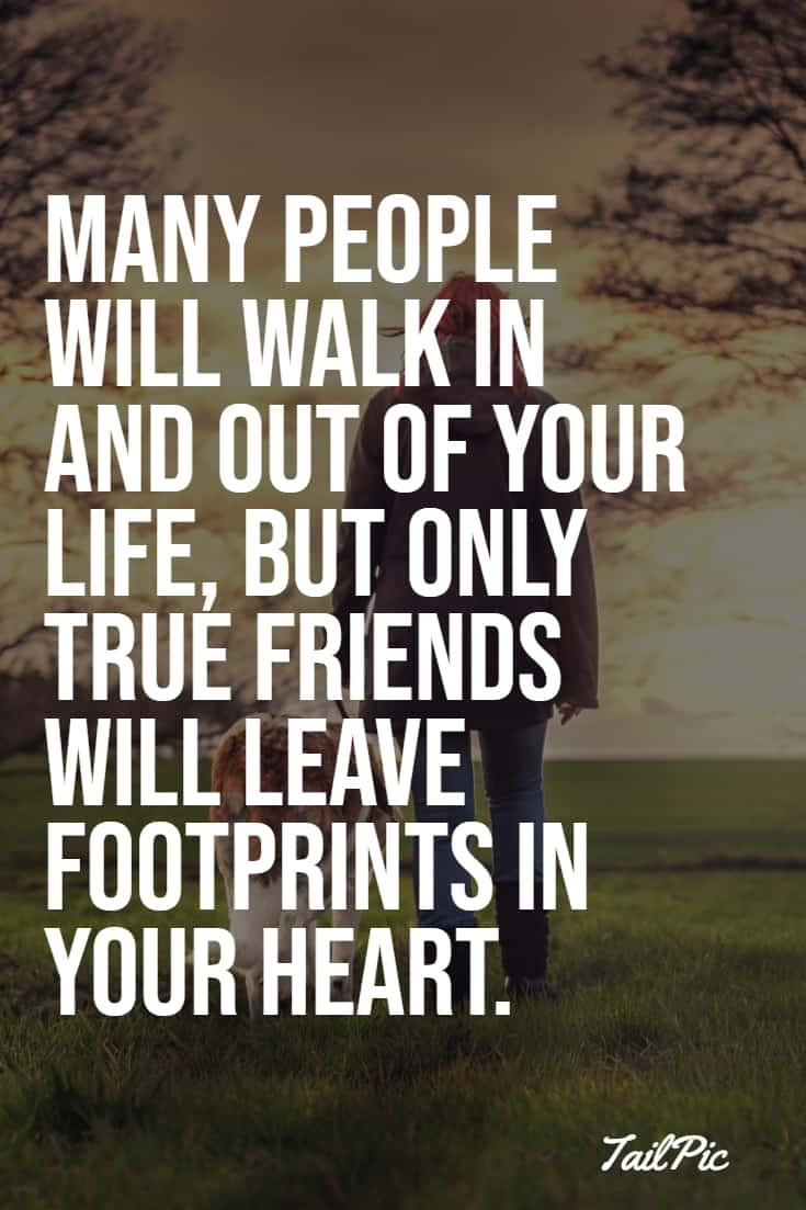 friendship quotes funny 119 quotes about friends