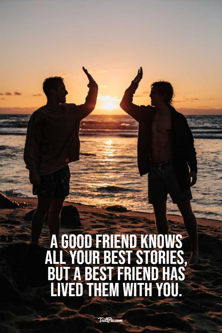 Best Friendship Quotes to Enriched Your Life