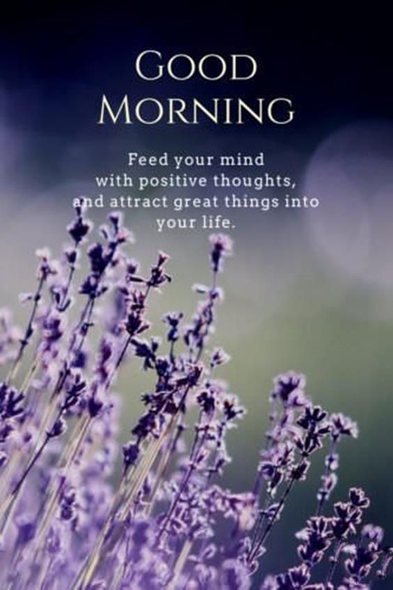 38 Inspirational Good Morning Quotes with Beautiful Images 33