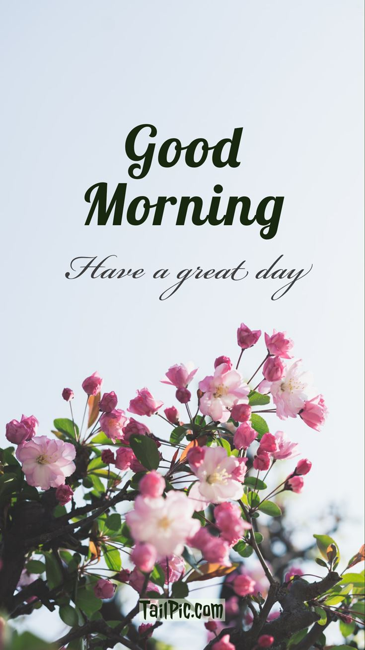 Good Morning Pictures 5