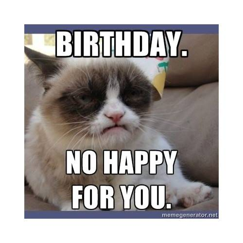 Funny Happy Birthday Memes That Will Render You Wishes 27