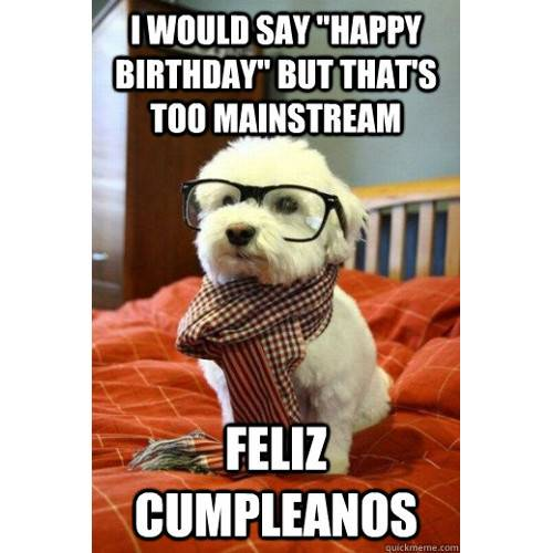 Funny Happy Birthday Memes That Will Render You Wishes 28