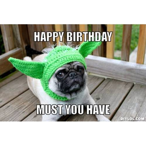 Funny Happy Birthday Memes That Will Render You Wishes 29