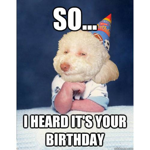 Funny Happy Birthday Memes That Will Render You Wishes 30