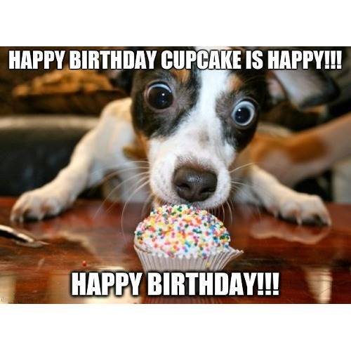 Funny Happy Birthday Memes That Will Render You Wishes 5