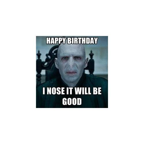 Funny Happy Birthday Memes That Will Render You Wishes 7