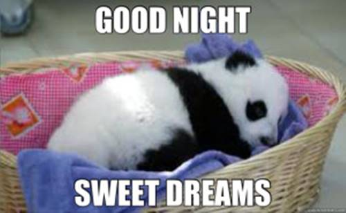 Good Night Memes For Him and Her 20