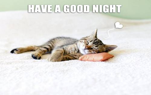 Good Night Memes For Him and Her 28
