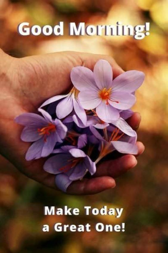 best good morning greetings images Wishes messages 13