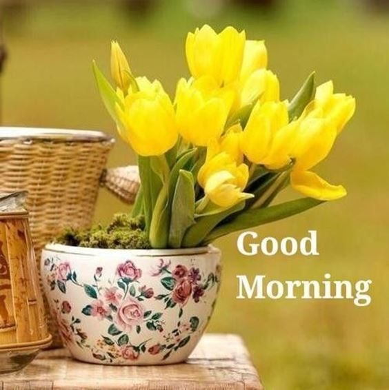 best good morning greetings images Wishes messages 2