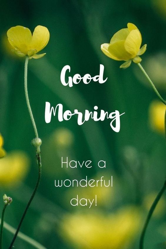 best good morning greetings images Wishes messages 34