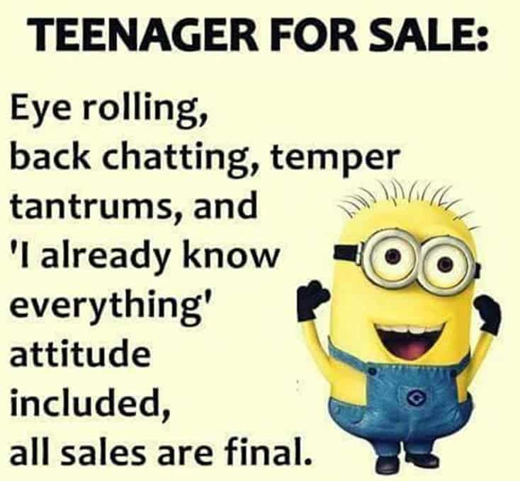 150 Funny Minions Quotes Sayings and Pics 13
