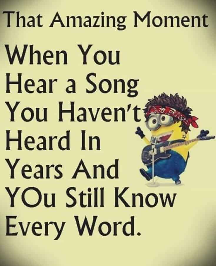 150 Funny Minions Quotes Sayings and Pics 5