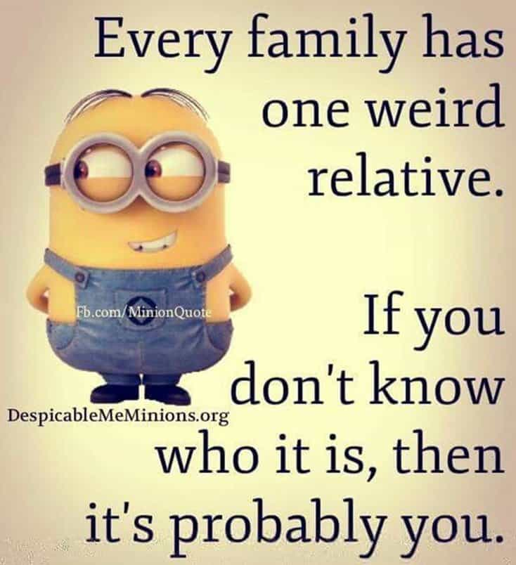 150 Funny Minions Quotes Sayings and Pics 8