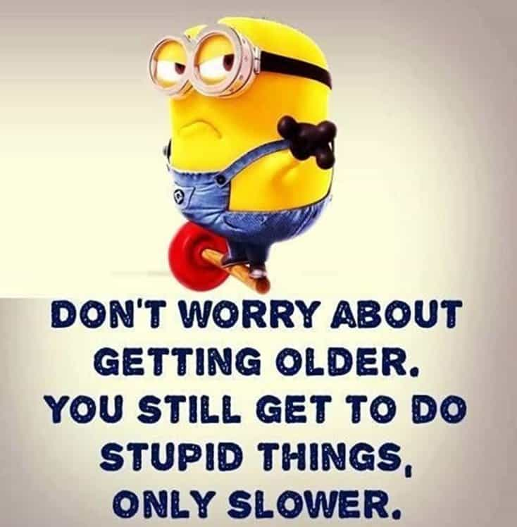 150 Funny Minions Quotes and Pics 1