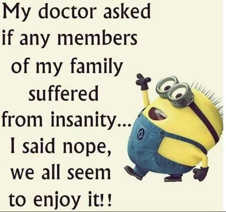 150 Funny Minions Quotes and Pics 10