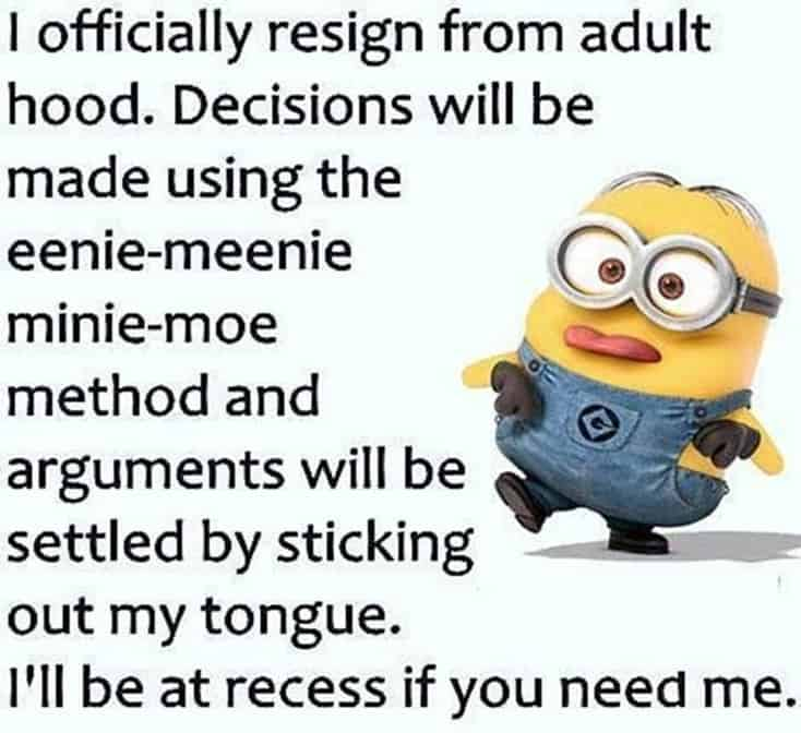 150 Funny Minions Quotes and Pics 14