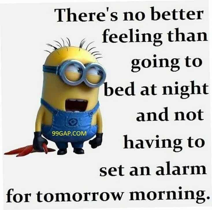 150 Funny Minions Quotes and Pics 16