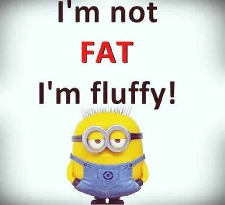 150 Funny Minions Quotes and Pics 17