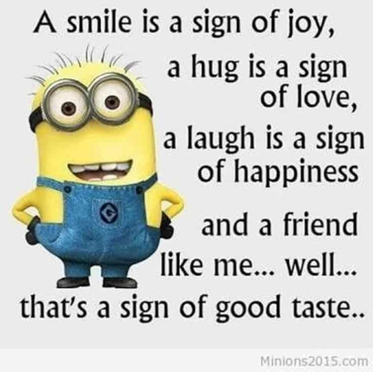 150 Funny Minions Quotes and Pics 9
