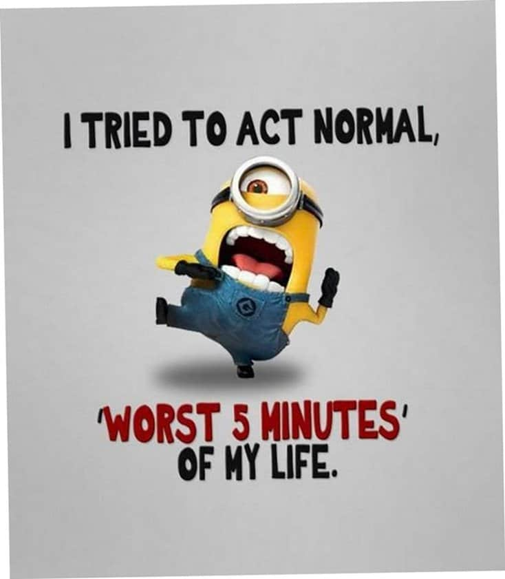 150 Funny Minions Quotes and Pics Bff Quotes Minions 27