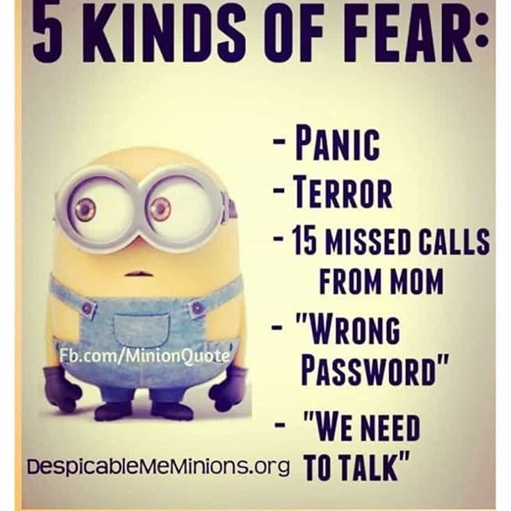 150 Funny Minions Quotes and Pics Bff Quotes Minions 32