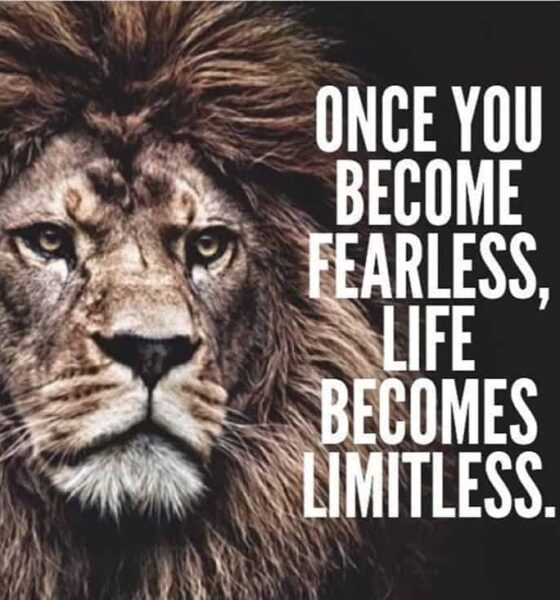 68 Motivational Inspirational Quotes For Success 38