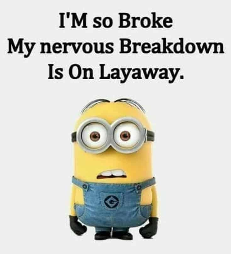 Top 28 Funny Minions Quotes and Pics 1