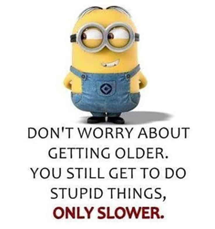 Top 28 Funny Minions Quotes and Pics 10