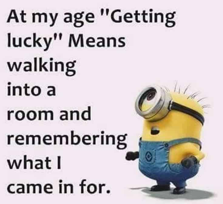 Top 28 Funny Minions Quotes and Pics 11