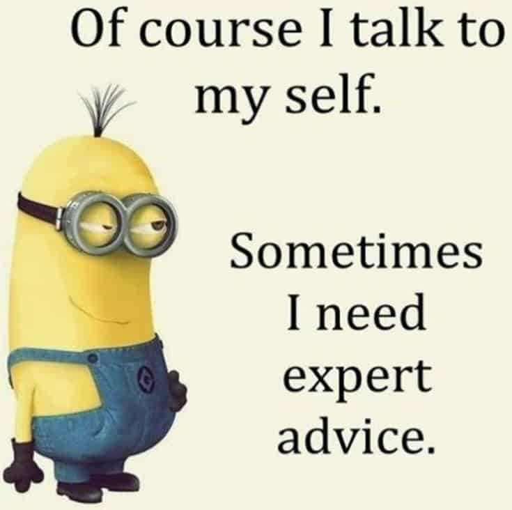 Top 28 Funny Minions Quotes and Pics 13