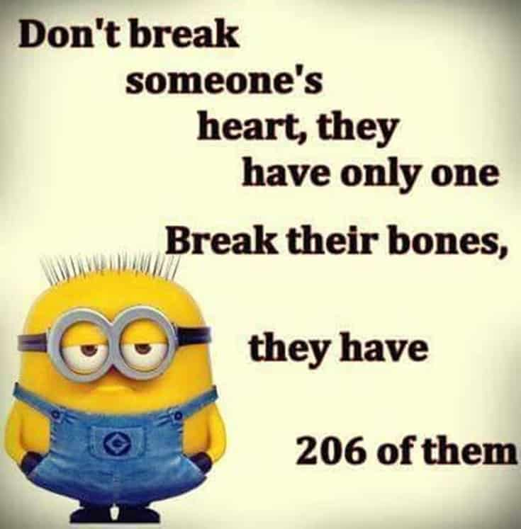 Top 28 Funny Minions Quotes and Pics 19