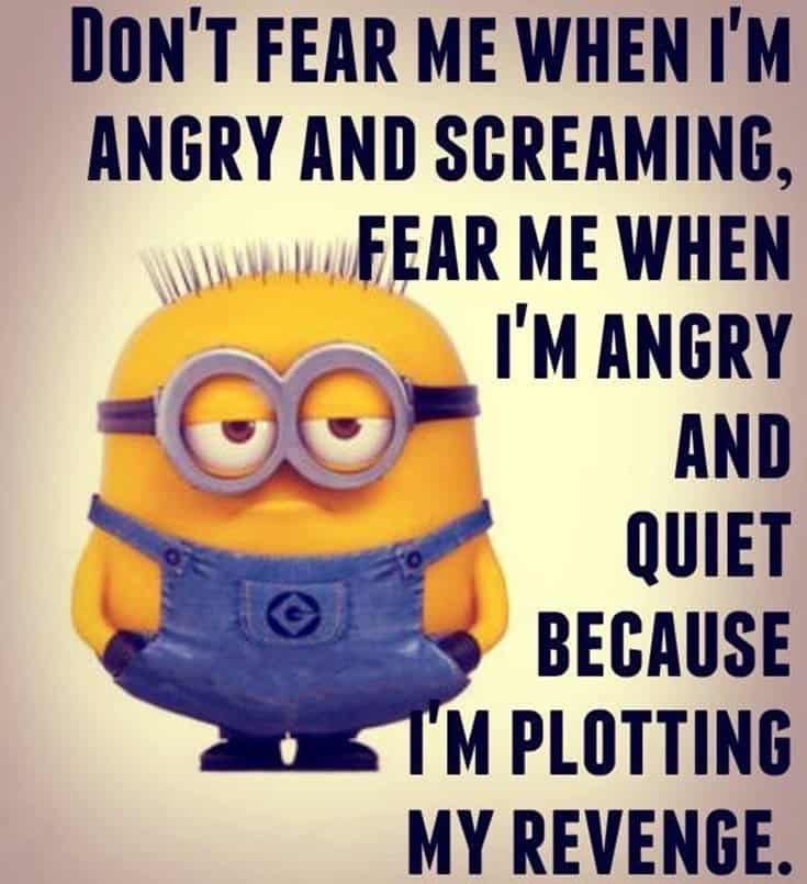 Top 28 Funny Minions Quotes and Pics 23