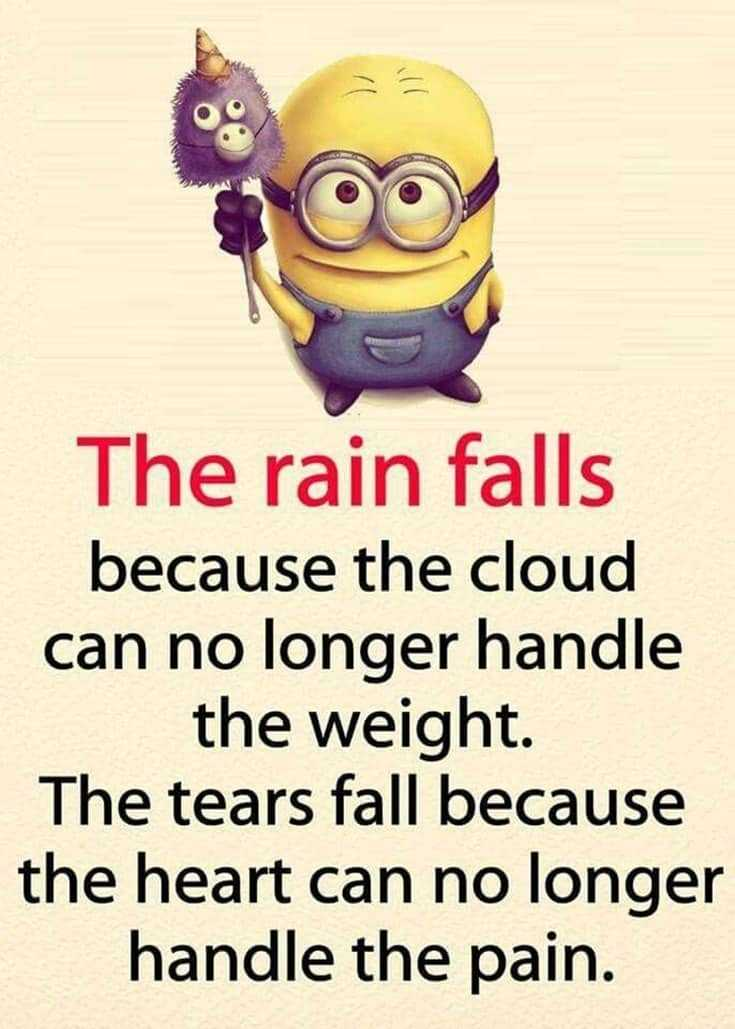 Top 28 Funny Minions Quotes and Pics 24