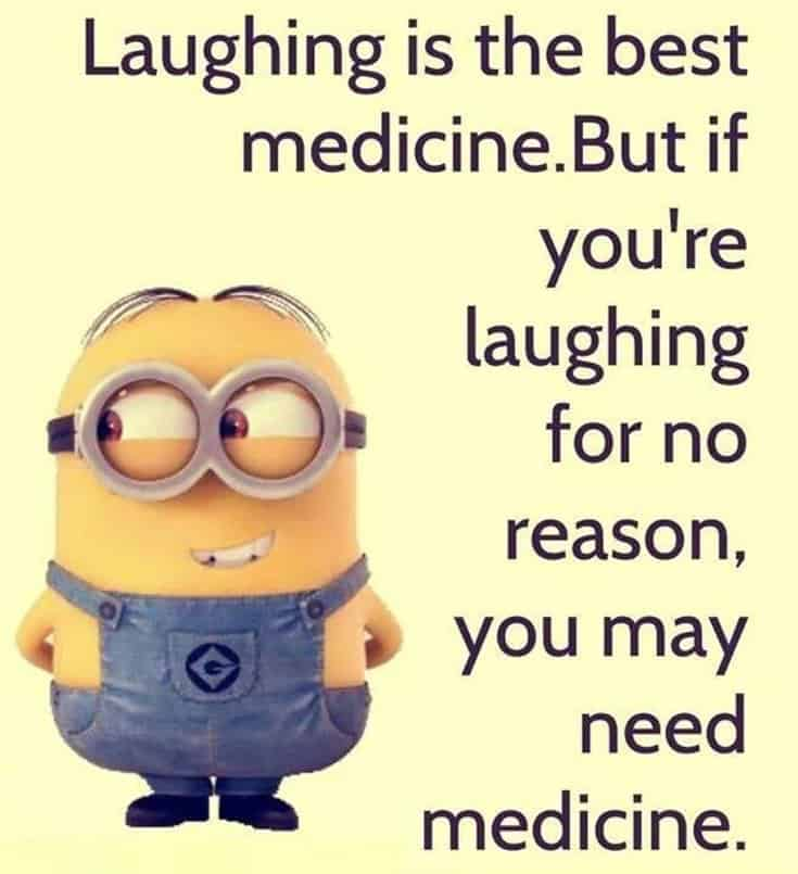Top 28 Funny Minions Quotes and Pics 25