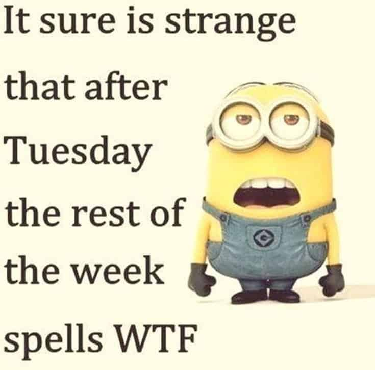 Top 28 Funny Minions Quotes and Pics 4