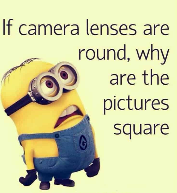 Top 28 Funny Minions Quotes and Pics 7